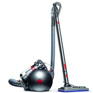 Dyson 100014-01 Cinetic Big Ball AnimalPro